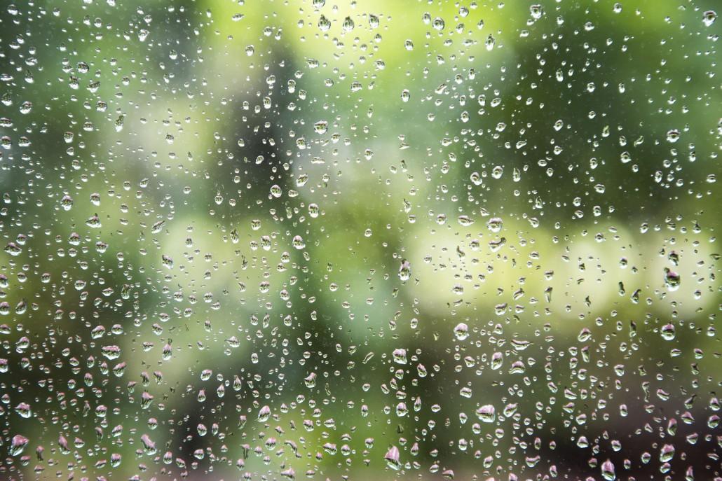 profesionálně umytá okna