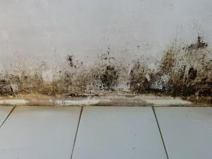 Účinný způsob na odstranění vlhkosti a plísně